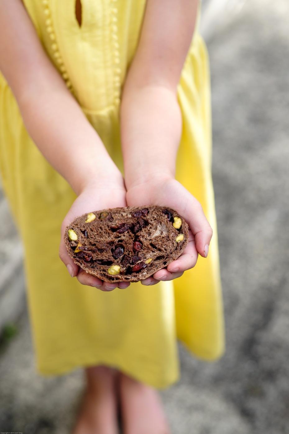 chocolate cranberry pistachio spelt sourdough www.Cultured.kiwi